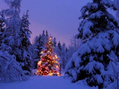 Joyeux-noel-Cénoteplaisir-bon-cadeau-détente-bien-être-massage-relaxation-Soins-Bayonne-Biarritz-Anglet-Spa-institut-beauté-Noël